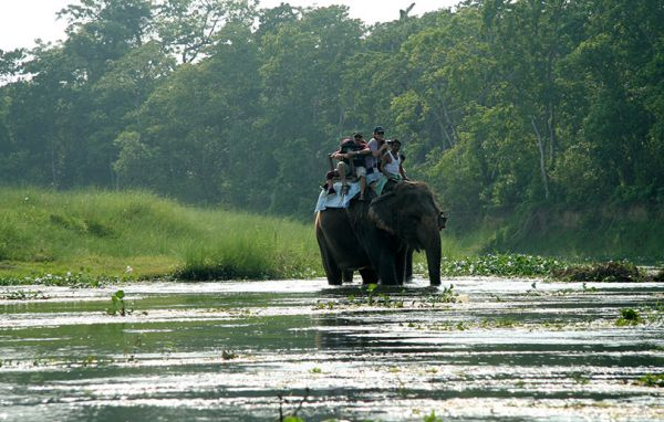 6-days Rafting-Wildlife Safari extension